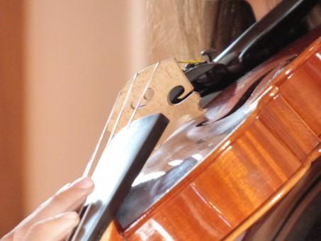 オーケストラで人気の楽器